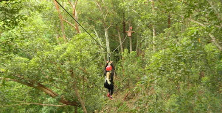 Free Child on Maui Zipline Tour